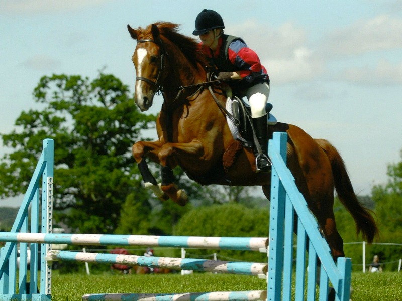 equestrian centres at UK boarding schools offer many opportunities